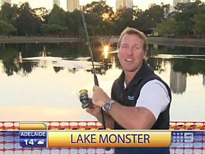 Shark Expert Reals in Duck on Live TV