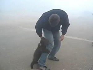 Bear cub attacks man's leg