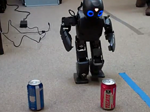 beer-loving robot