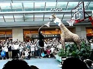 Dwight Howard dunks on giraffe