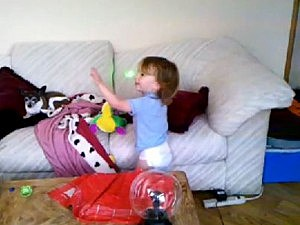 Toddler chases laser pointer