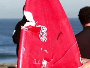 Shark Attacks California Man