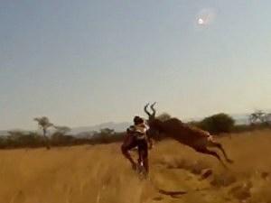 Antelope Trucks Pro Cyclist