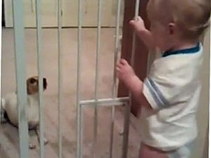 Baby dog talking video