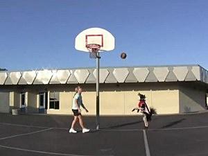dog plays basketball