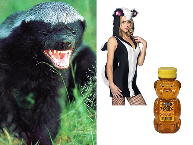honey-badger-costume