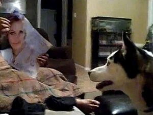husky scared of julia roberts