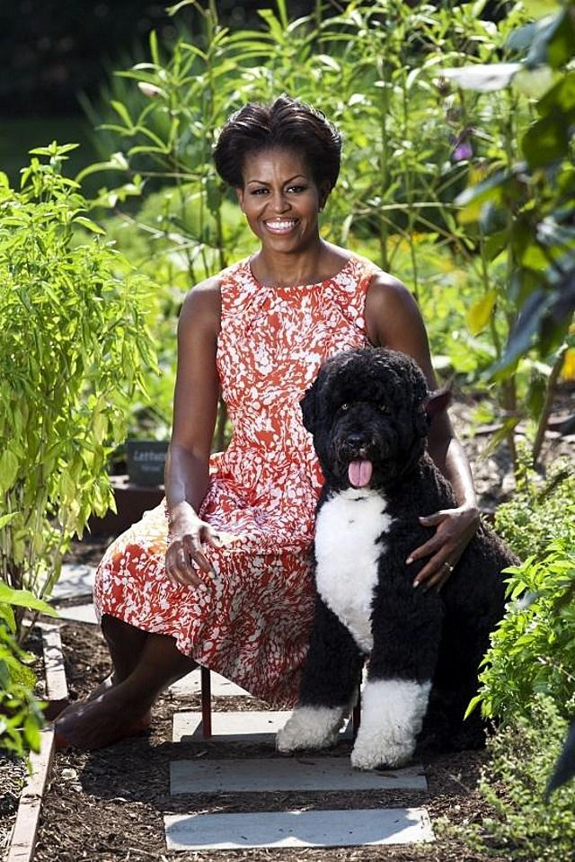 Michelle Obama Bo