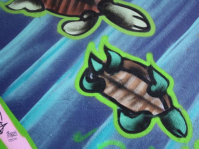 Turtle Graffiti