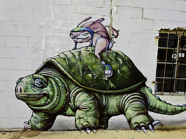 Turtle Graffiti