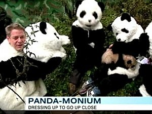 scientist dress like pandas