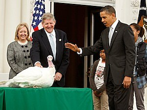 thanksgiving turkey president barack oabama pardon