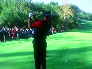 Fan Screams 'Mashed Potatoes!' During Tee Off