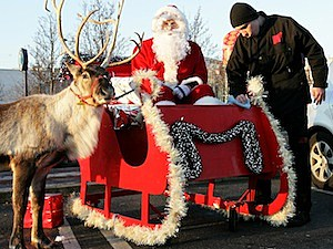 santa sleigh reindeer flying speed of light