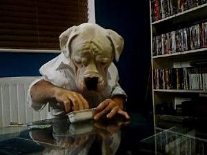 dogman eats dunkers