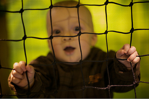 a kid in a net