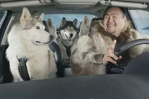 Suzuki Dog Sled