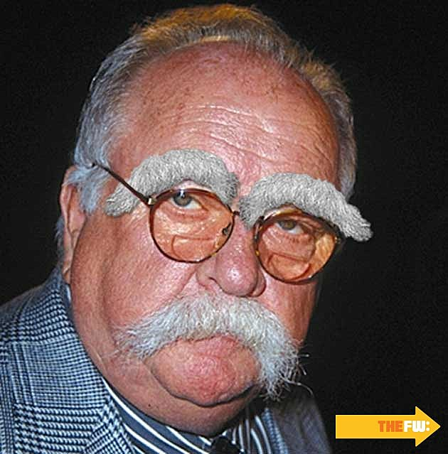 Wilfred Brimley Mustache Eyebrows