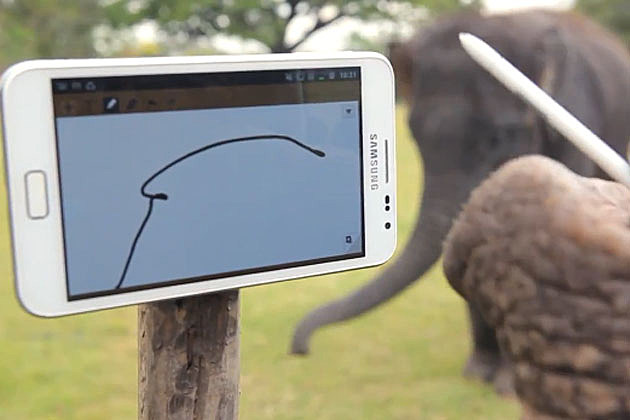 Elephant uses Samsung note