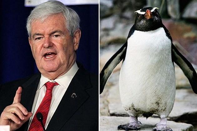 Penguin Next Gingrich