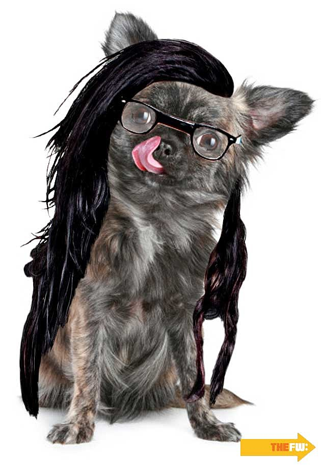 Animals with Skrillex Hair Dog