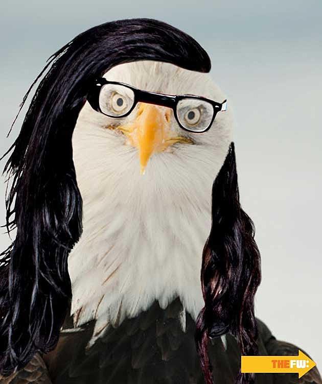 Animals with Skrillex Hair Eagle