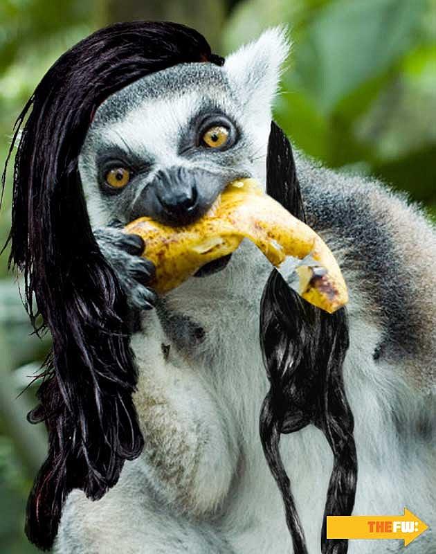 Animals with Skrillex Hair Lemur
