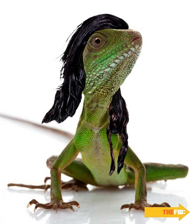 Animals with Skrillex Hair Lizard