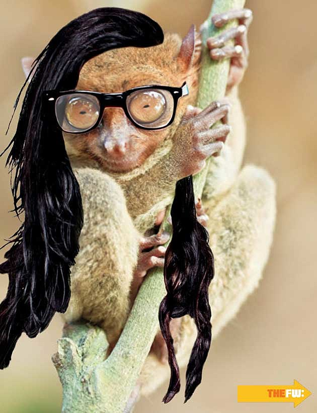 Animals with Skrillex Hair Tarsier