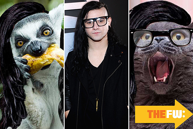 Animals with Skrillex hair