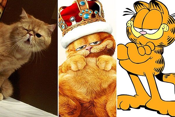 11 Things You Didn't Know About 'Garfield'