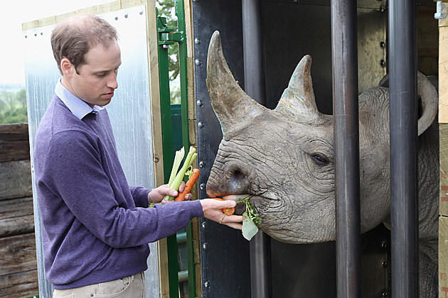 Prince William Visits Rhino