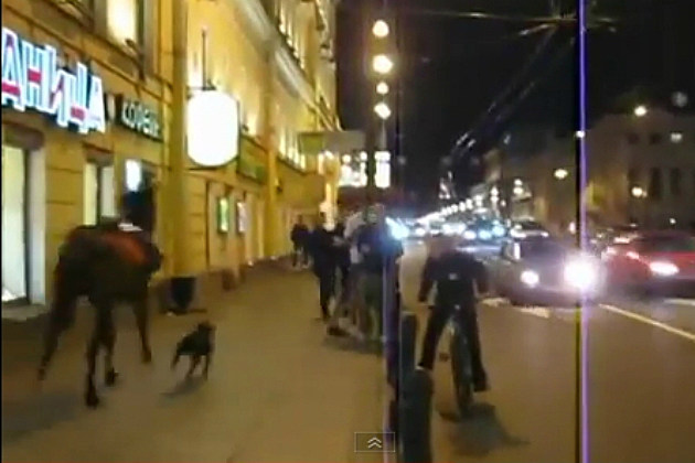 Horse and Dog Race Down Sidewalk in Russia