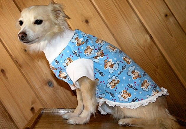 Etsy dog summer pajamas