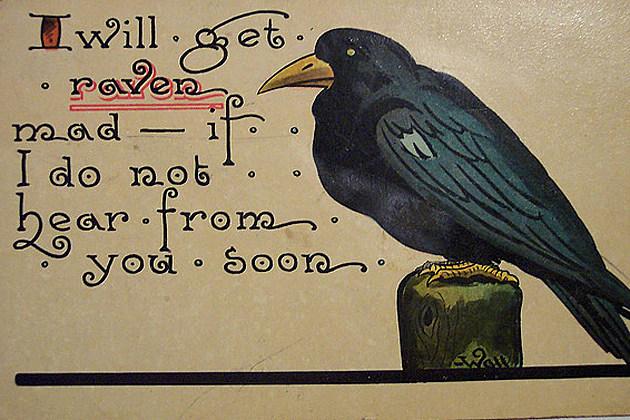 halloween card raven