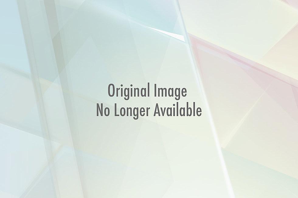 Santa hat dog