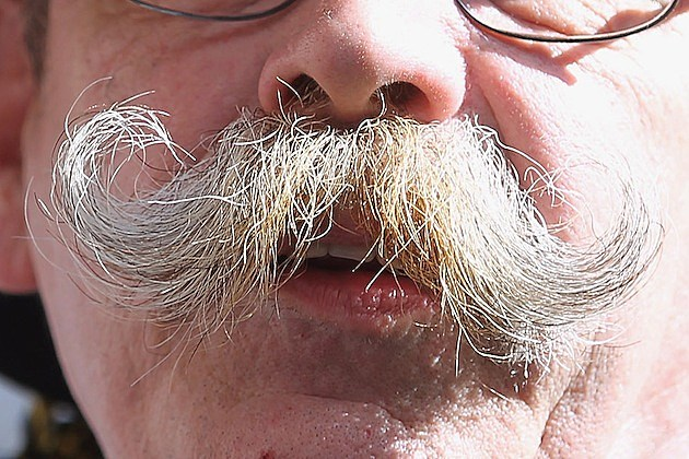 Germany Celebrates Unity Day mustache facial hair