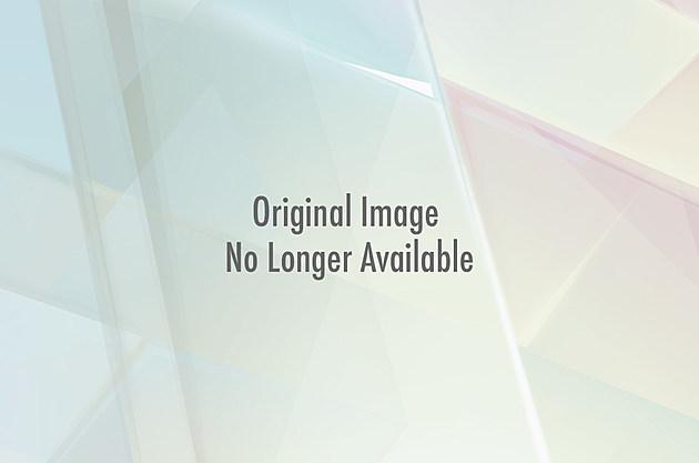Llama hair
