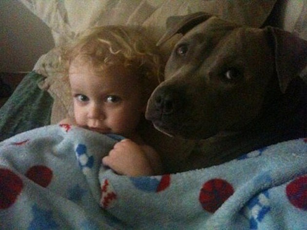 Puppy and Baby