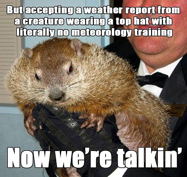 Groundhog Day Meme