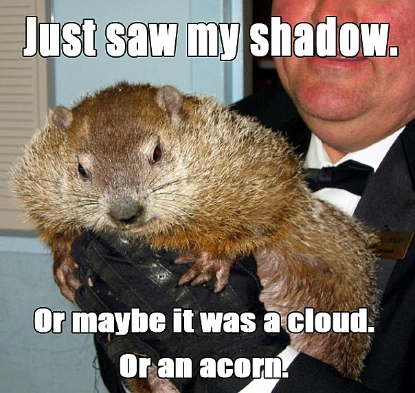 Groundhog Day Meme