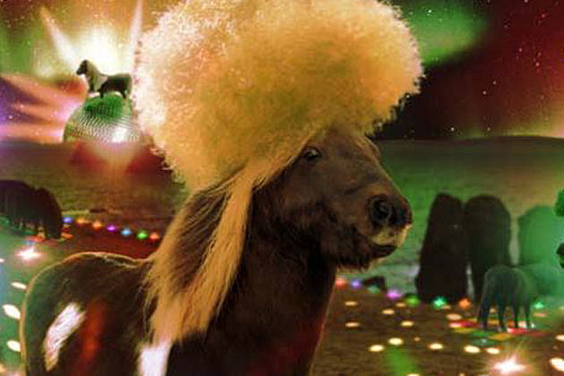 funk horse