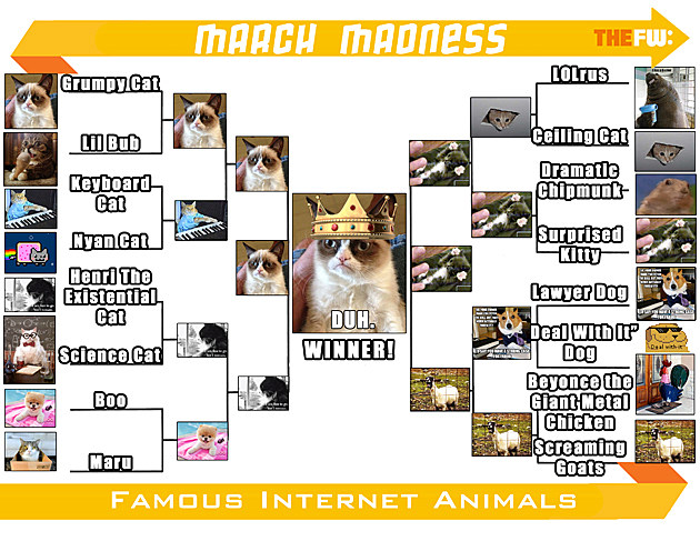 TheFW Internet Animals FINAL Small