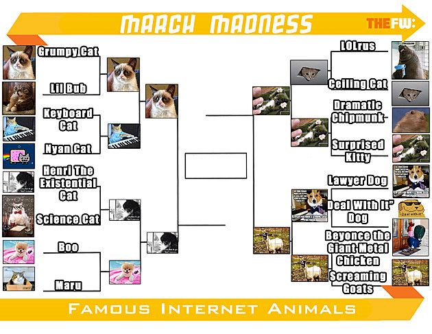 TheFW Internet Animals ROUND3 Small