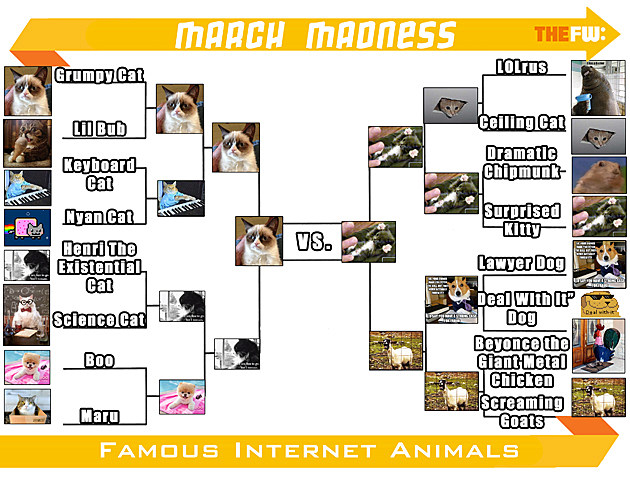 TheFW Internet Animals ROUND 4 Small