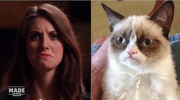 Grumpy Brie