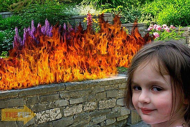 Garden on Fire