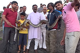 Python Selfie